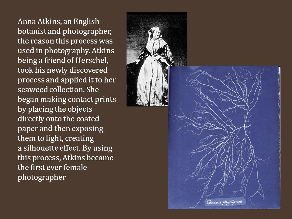 Anna Atkins, an English botanist and photographer, the reason this process was used in photography.