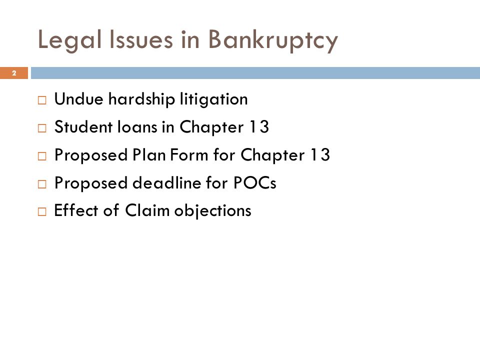 Legal Issues in Bankruptcy