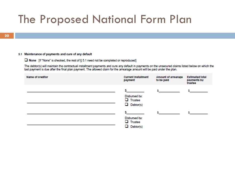 The Proposed National Form Plan