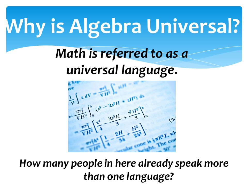 Why is Algebra Universal