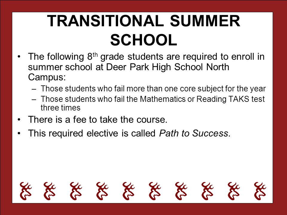 TRANSITIONAL SUMMER SCHOOL