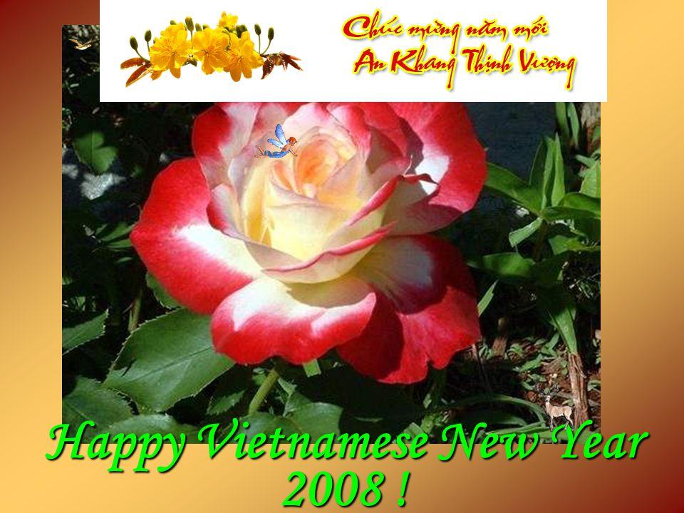Happy Vietnamese New Year 2008 !