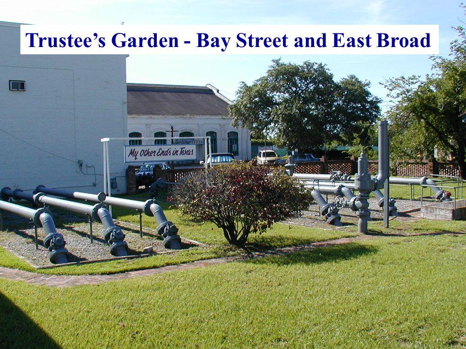 Trustee's Garden - Bay Street and East Broad