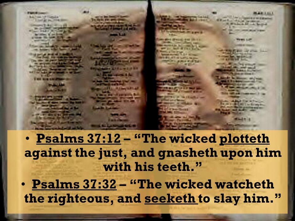 Psalms 37:12 – The wicked plotteth against the just, and gnasheth upon him with his teeth.
