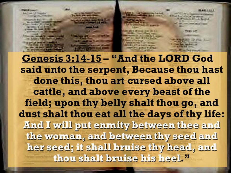 Genesis 3:14-15 – And the LORD God said unto the serpent, Because thou hast done this, thou art cursed above all cattle, and above every beast of the field; upon thy belly shalt thou go, and dust shalt thou eat all the days of thy life: And I will put enmity between thee and the woman, and between thy seed and her seed; it shall bruise thy head, and thou shalt bruise his heel.