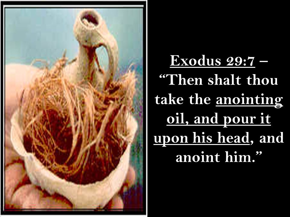 Exodus 29:7 – Then shalt thou take the anointing oil, and pour it upon his head, and anoint him.