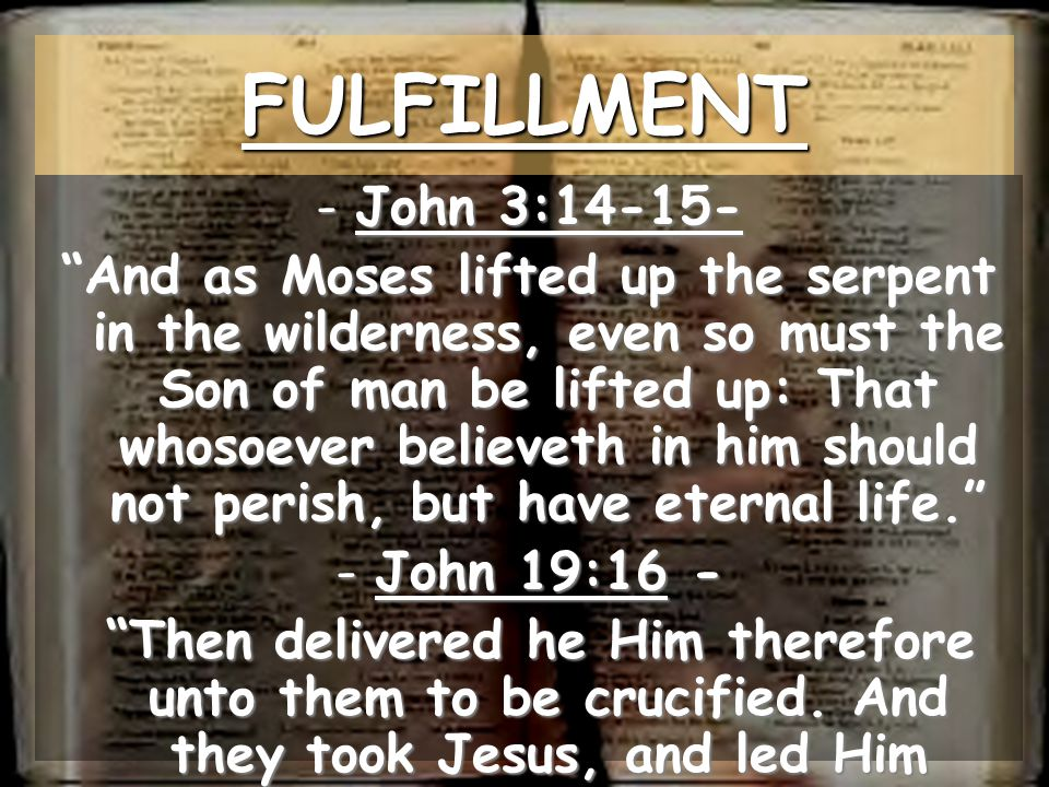 FULFILLMENT John 3:14-15-