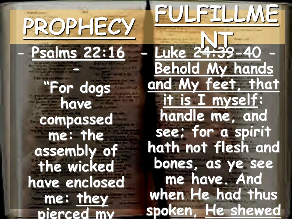 PROPHECY FULFILLMENT - Psalms 22:16 -