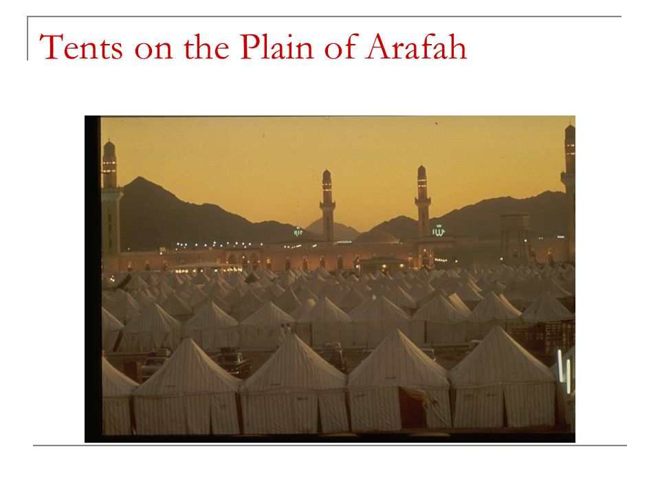 Tents on the Plain of Arafah