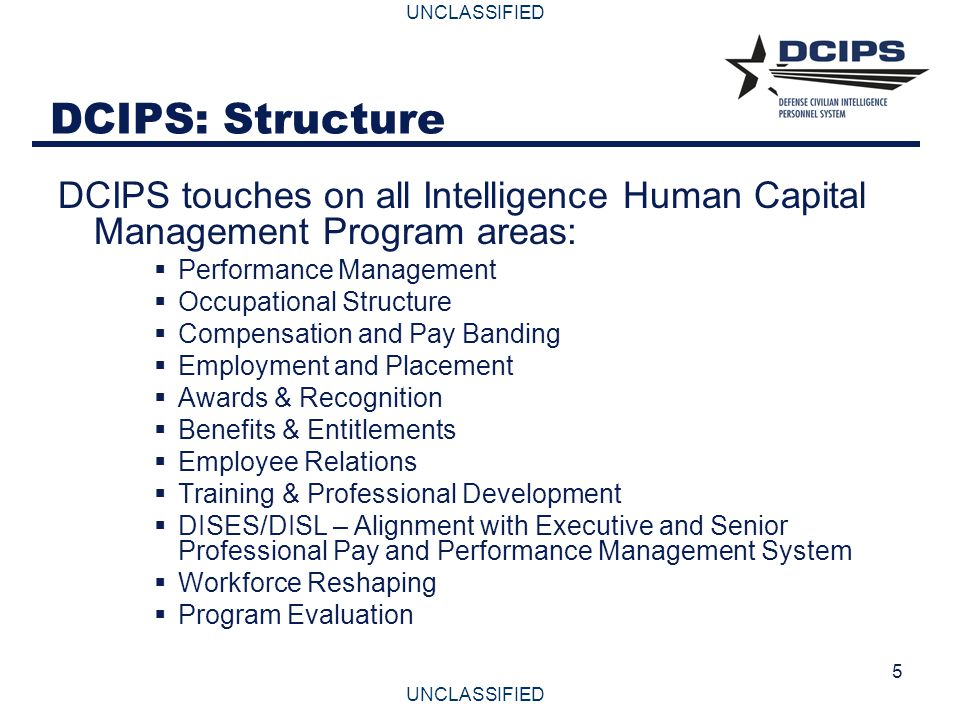 DCIPS: Structure DCIPS touches on all Intelligence Human Capital Management Program areas: Performance Management.