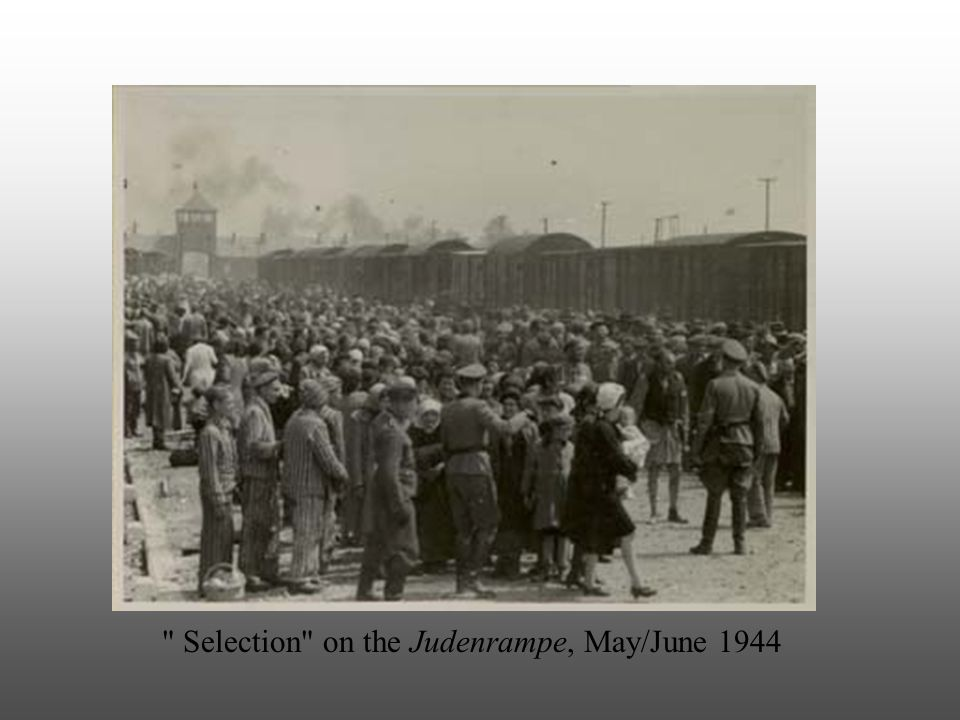 Selection on the Judenrampe, May/June 1944