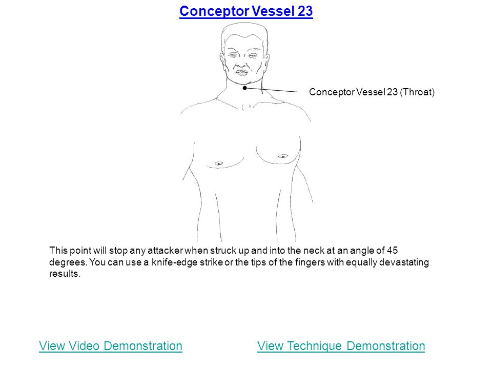 Conceptor Vessel 23 View Video Demonstration