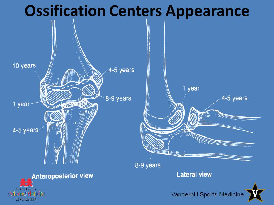Ossification Centers Appearance