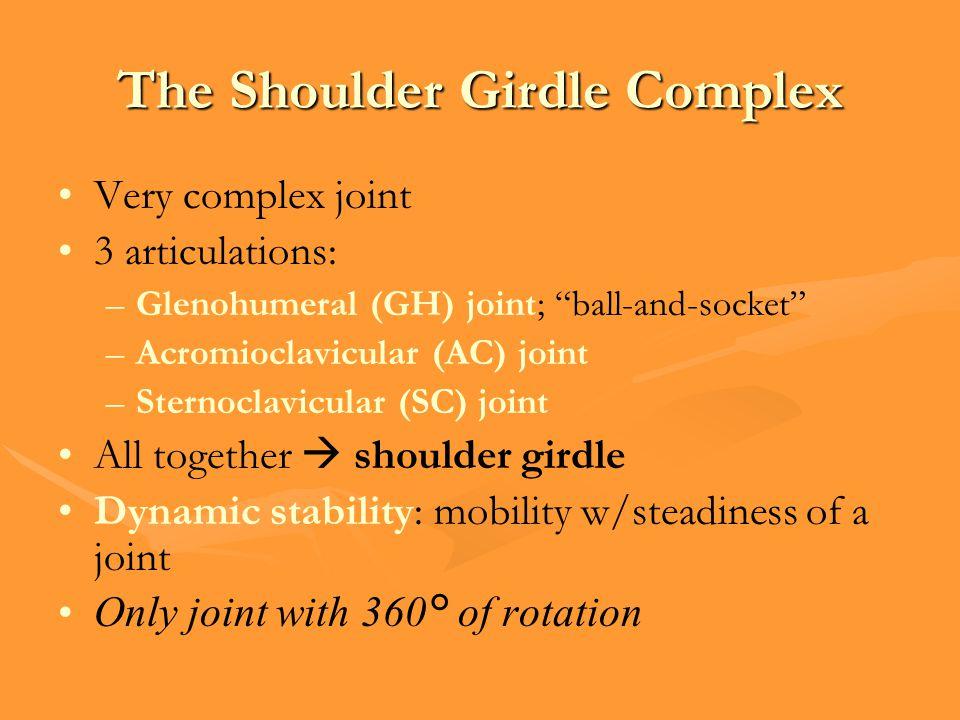 The Shoulder Girdle Complex