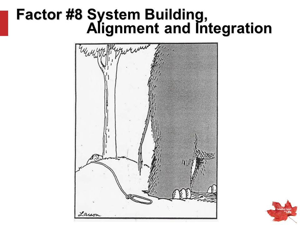 Factor #8 System Building, Alignment and Integration