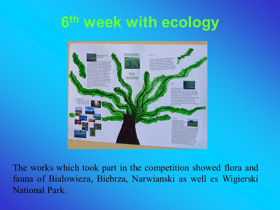 6th week with ecology