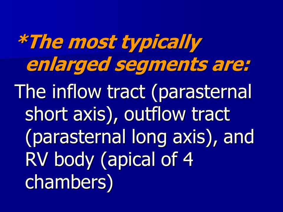 *The most typically enlarged segments are: