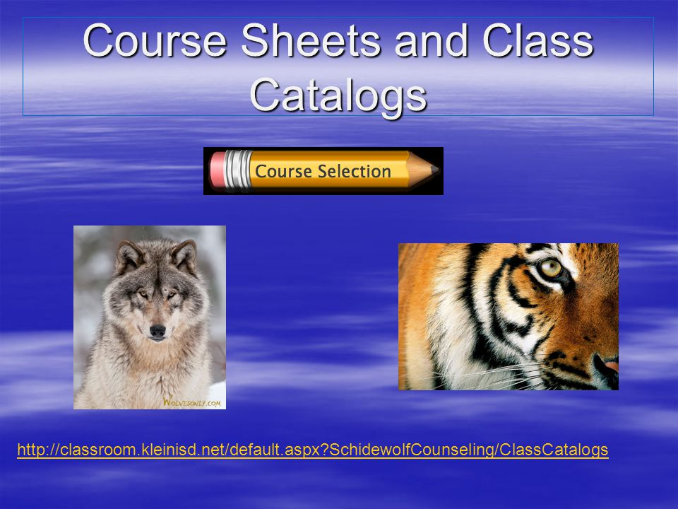 Course Sheets and Class Catalogs