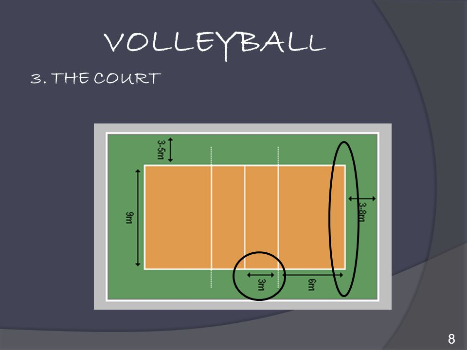 VOLLEYBALL 3. THE COURT