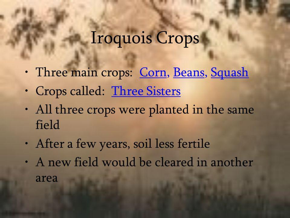 Iroquois Crops Three main crops: Corn, Beans, Squash