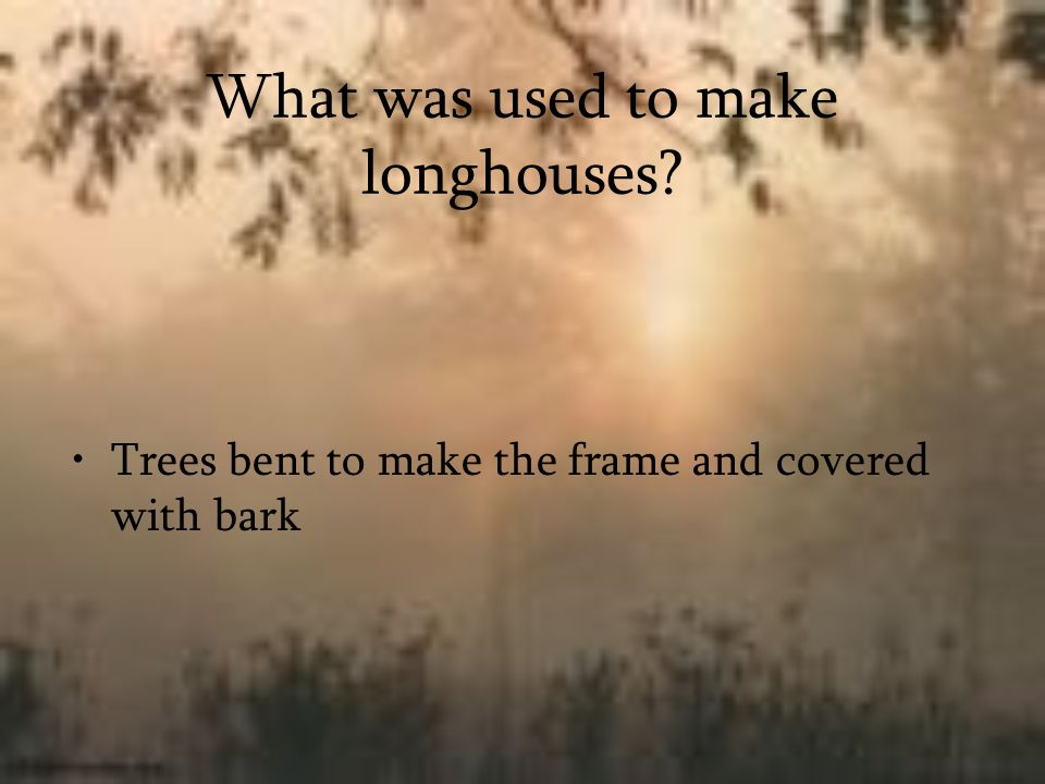 What was used to make longhouses