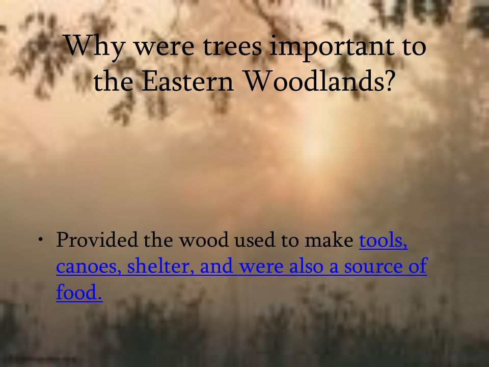Why were trees important to the Eastern Woodlands