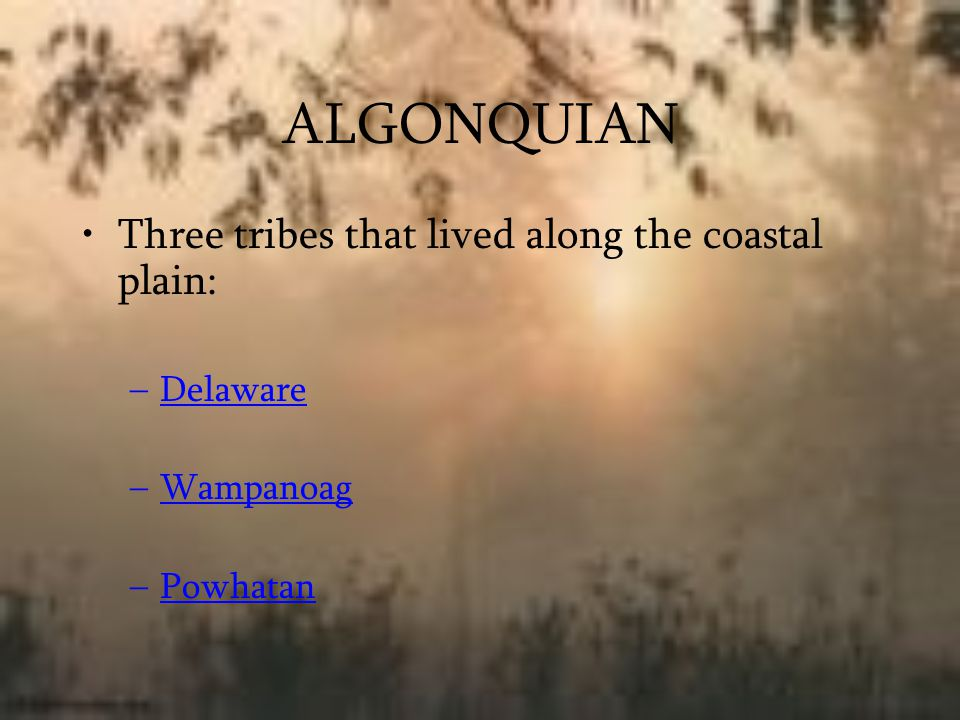 ALGONQUIAN Three tribes that lived along the coastal plain: Delaware