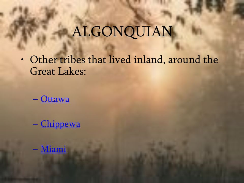 ALGONQUIAN Other tribes that lived inland, around the Great Lakes: