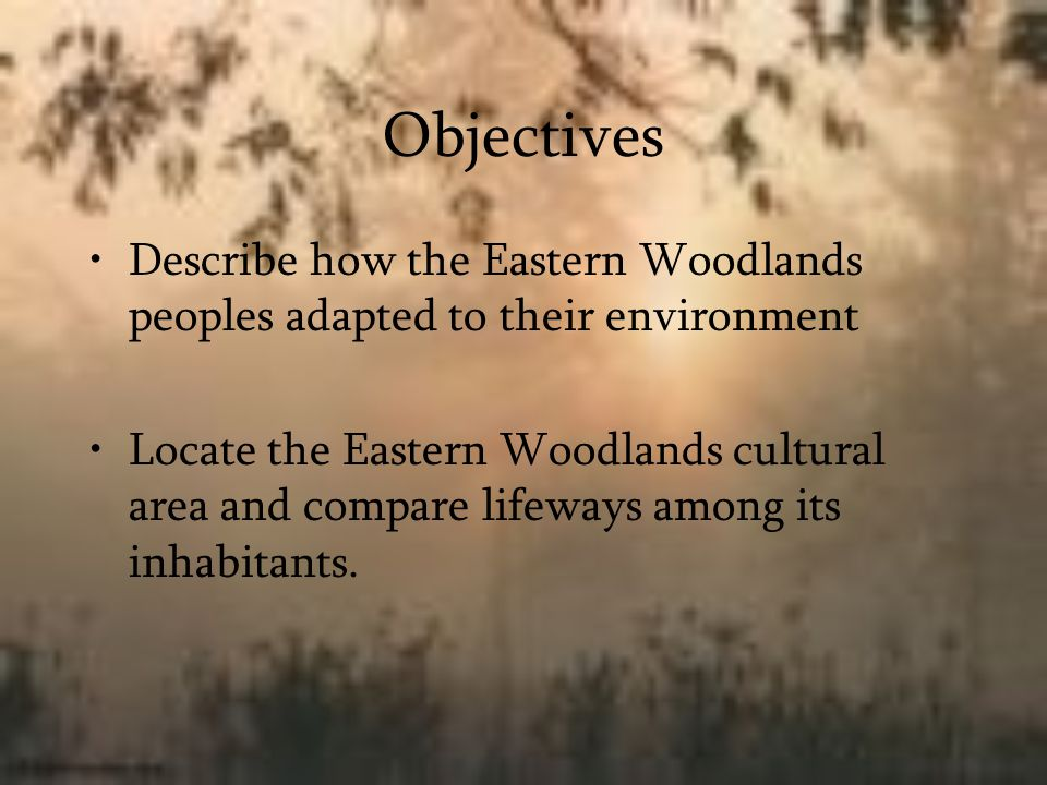Objectives Describe how the Eastern Woodlands peoples adapted to their environment.