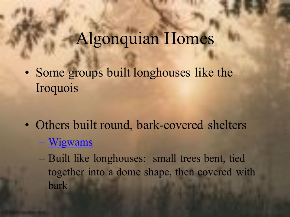 Algonquian Homes Some groups built longhouses like the Iroquois