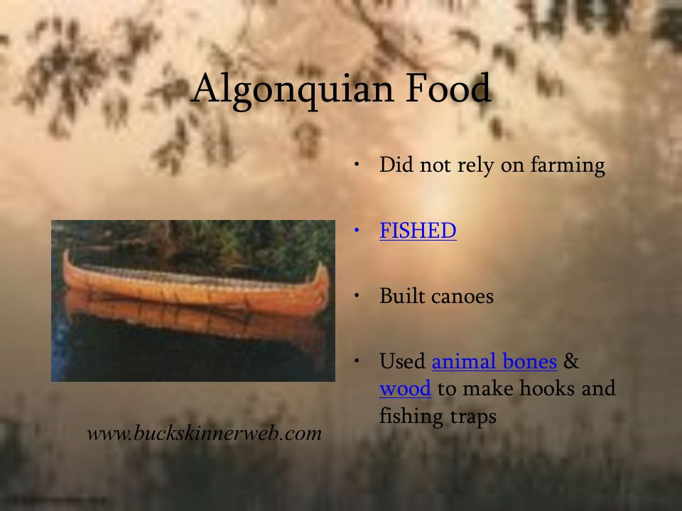 Algonquian Food Did not rely on farming FISHED Built canoes