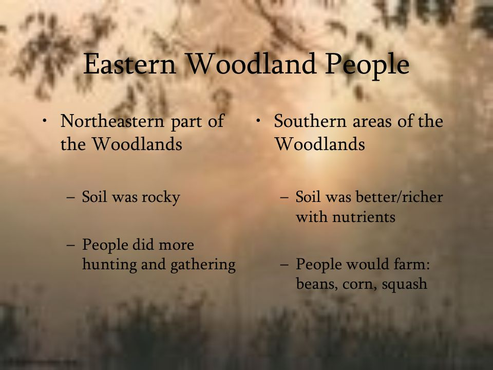Eastern Woodland People