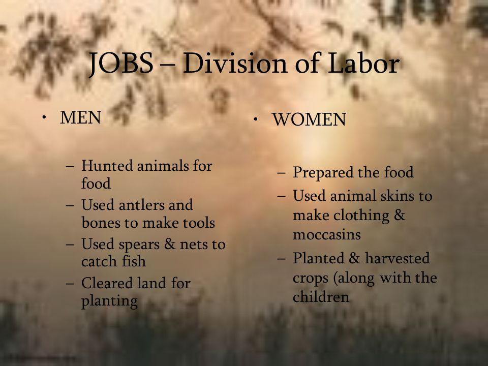 JOBS – Division of Labor