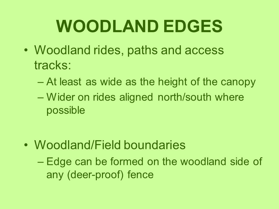 WOODLAND EDGES Woodland rides, paths and access tracks: