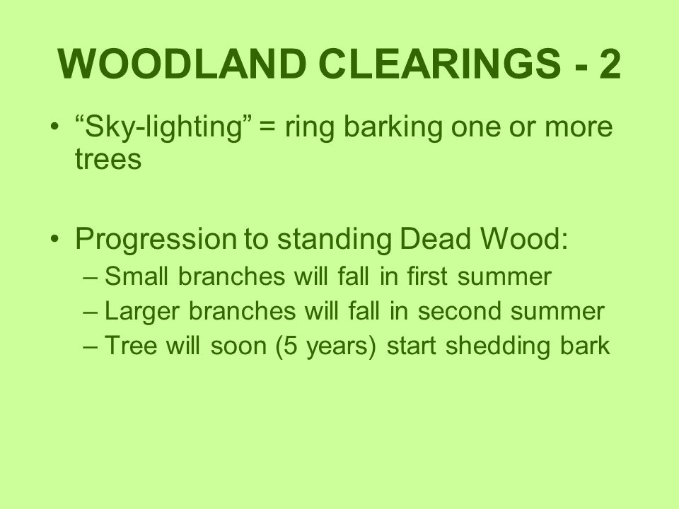 WOODLAND CLEARINGS - 2 Sky-lighting = ring barking one or more trees
