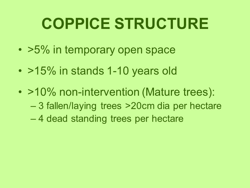 COPPICE STRUCTURE >5% in temporary open space