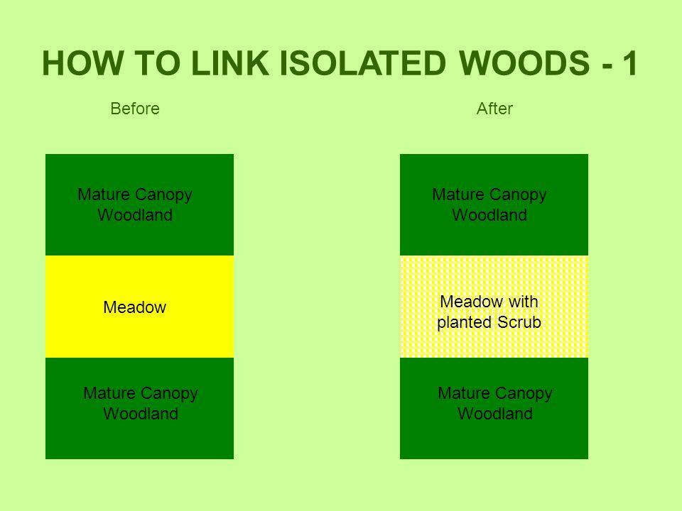 HOW TO LINK ISOLATED WOODS - 1