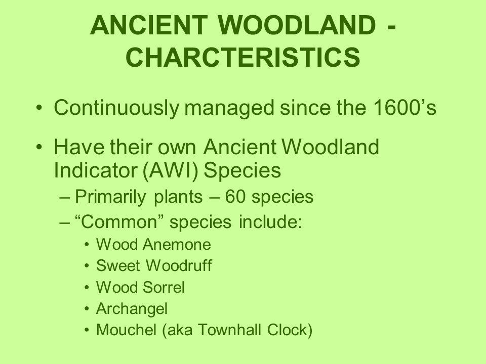 ANCIENT WOODLAND -CHARCTERISTICS