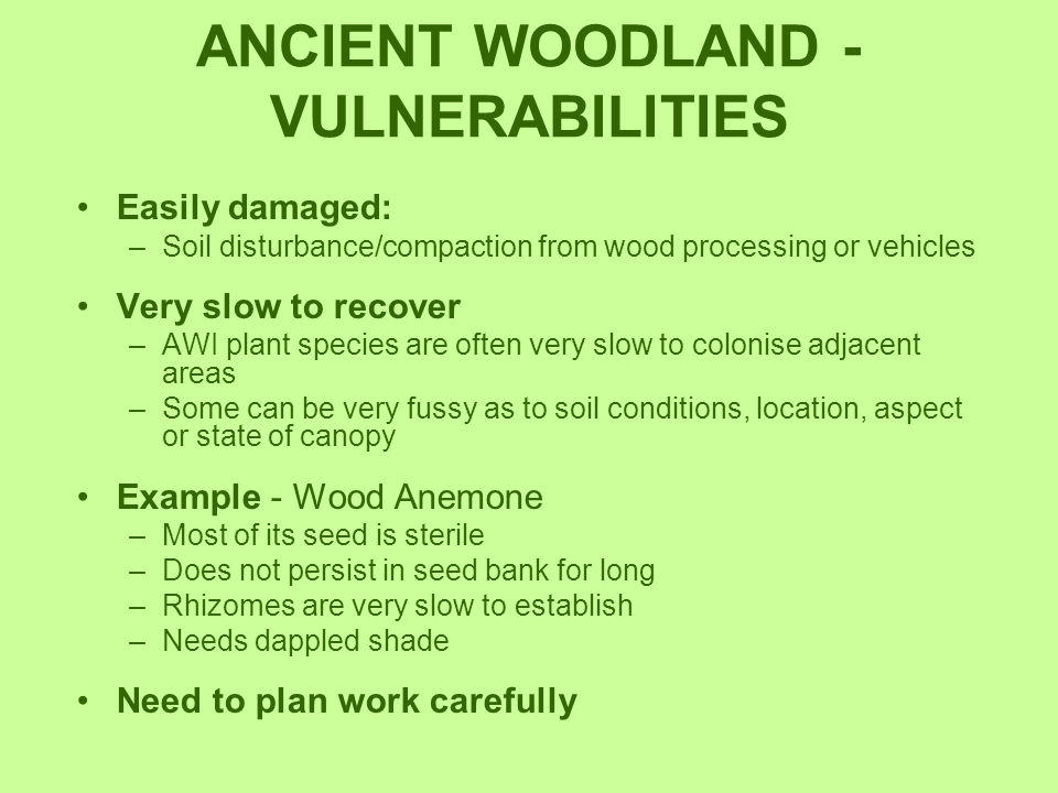 ANCIENT WOODLAND - VULNERABILITIES