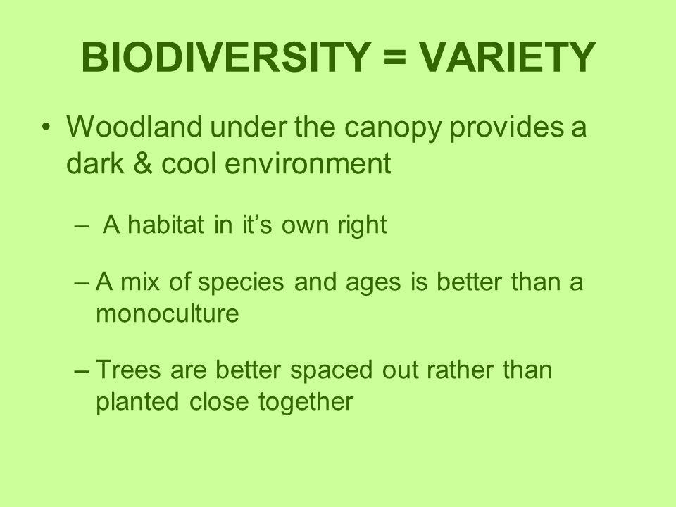 BIODIVERSITY = VARIETY