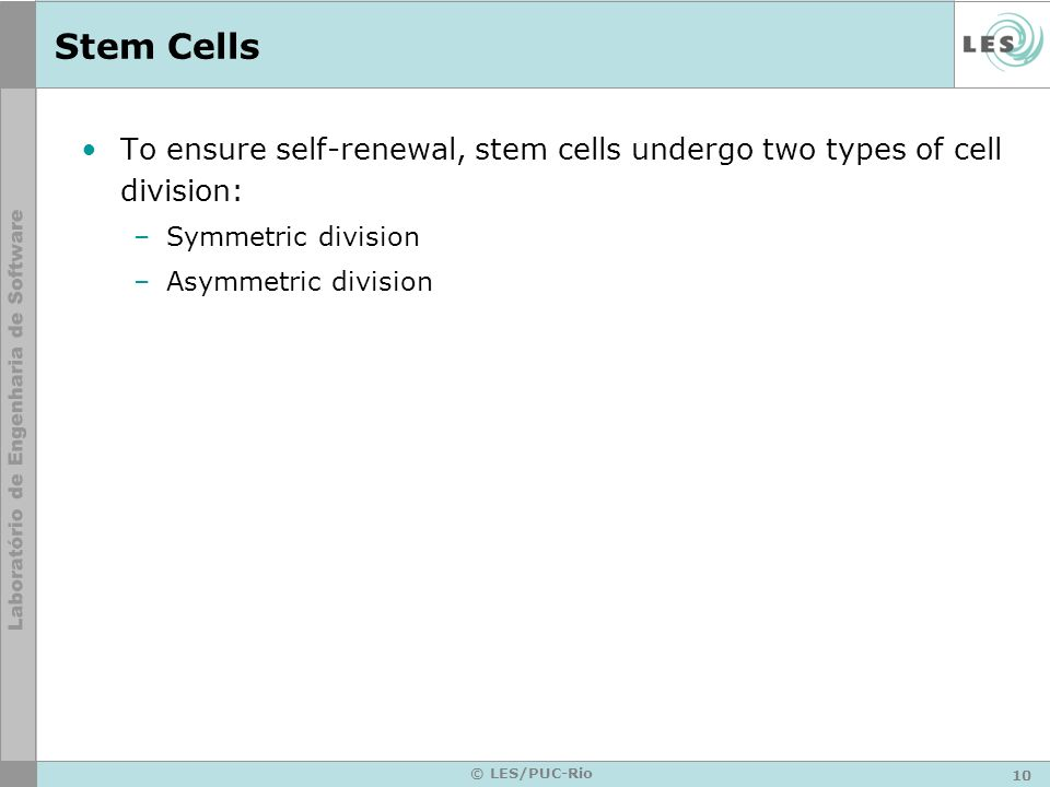 Stem Cells To ensure self-renewal, stem cells undergo two types of cell division: Symmetric division.