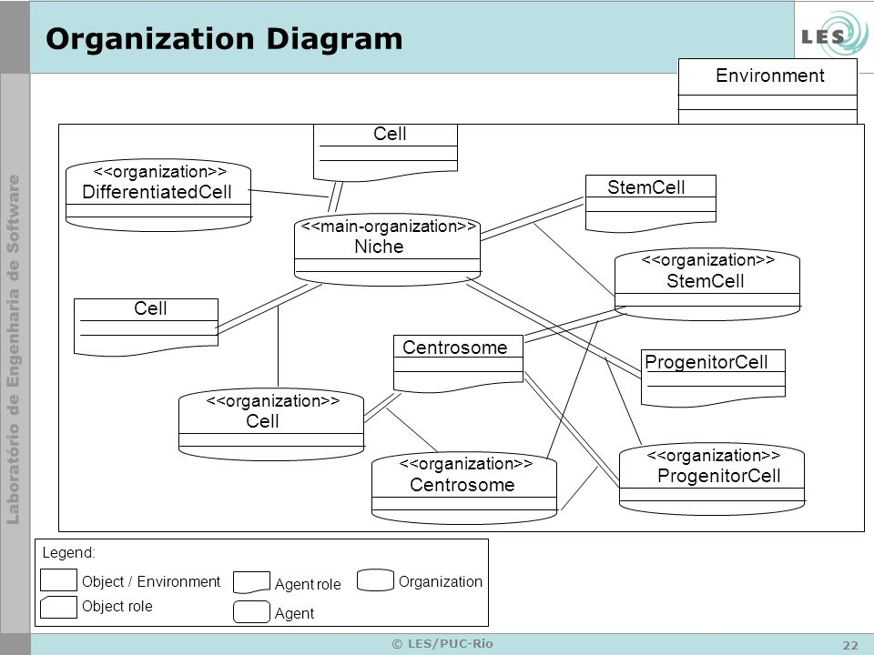 Organization Diagram Environment Cell StemCell DifferentiatedCell