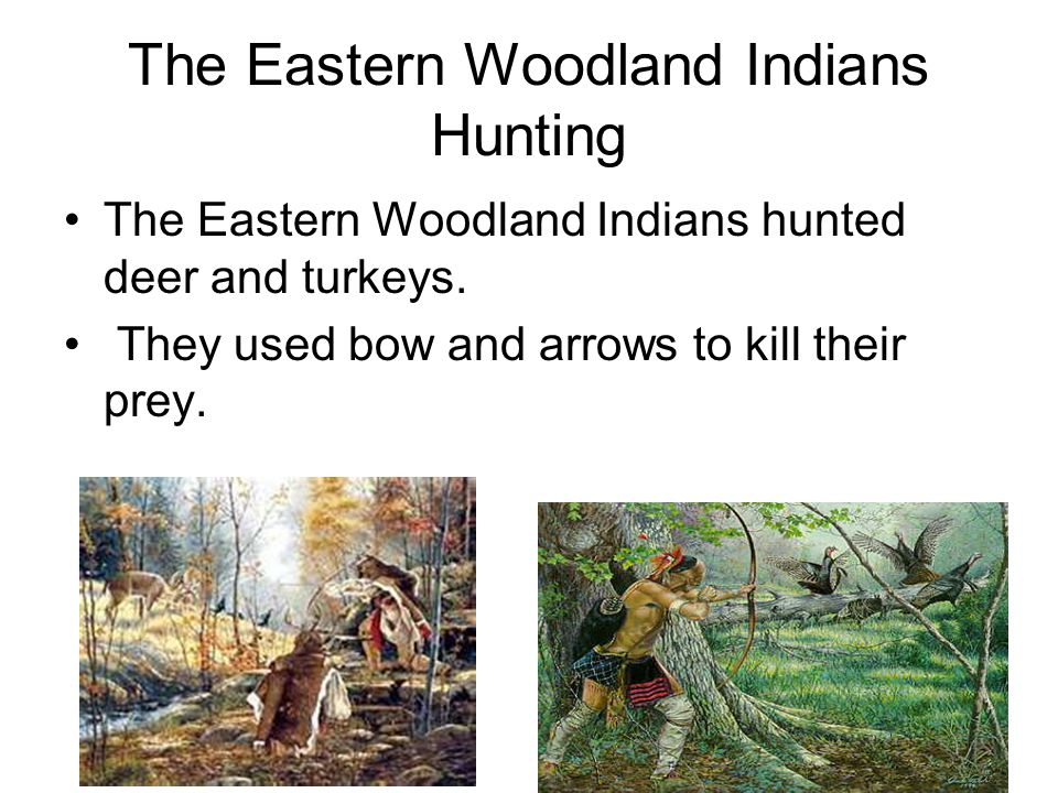 The Eastern Woodland Indians Hunting