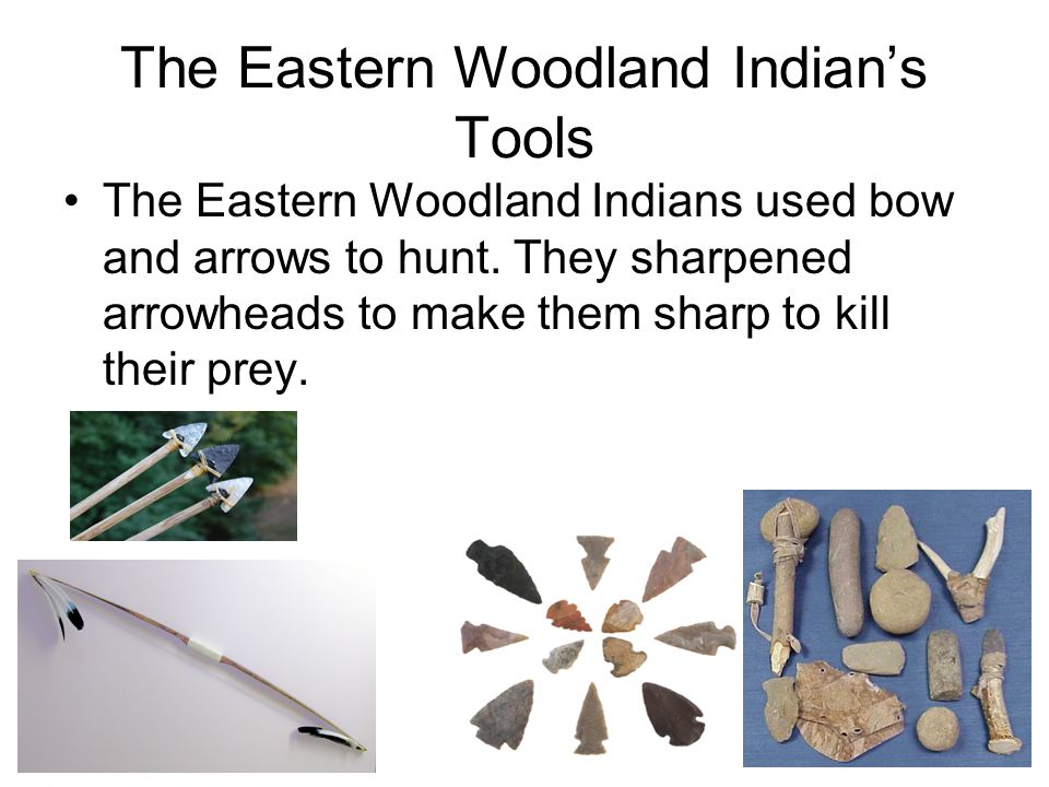 The Eastern Woodland Indian's Tools