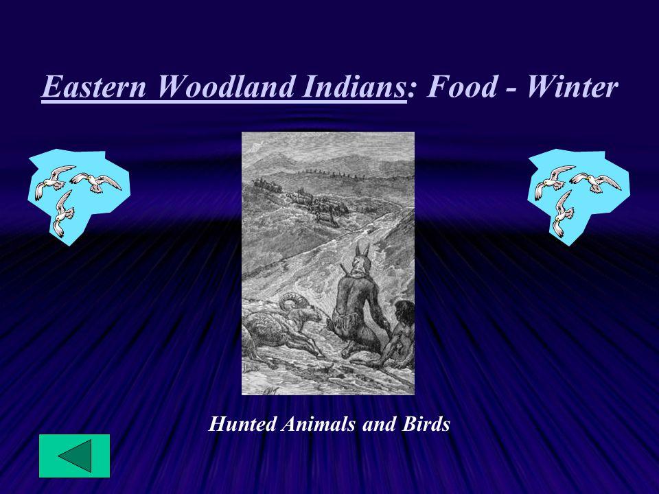 Eastern Woodland Indians: Food - Winter