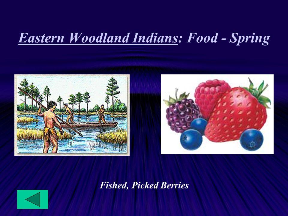 Eastern Woodland Indians: Food - Spring