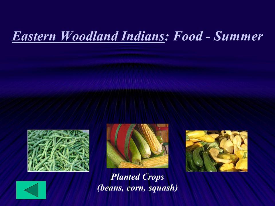 Eastern Woodland Indians: Food - Summer