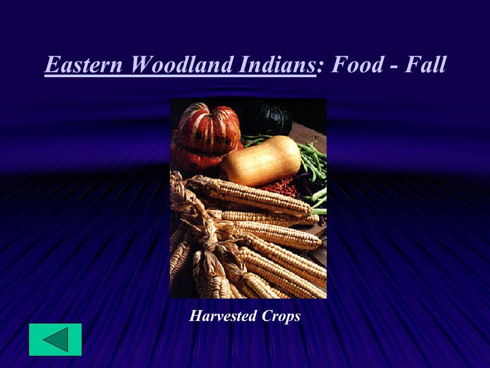 Eastern Woodland Indians: Food - Fall