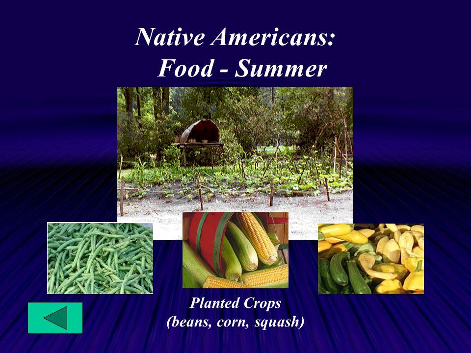 Native Americans: Food - Summer