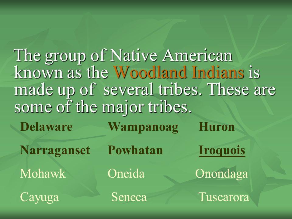 Delaware Wampanoag Huron Narraganset Powhatan Iroquois